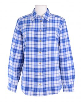 Blue Check Casual Classic Fit Blouse