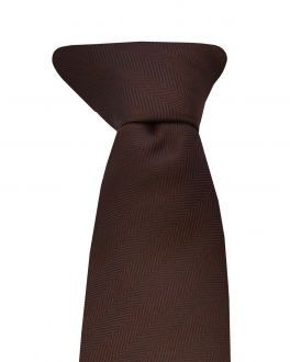 Brown Clip On Tie