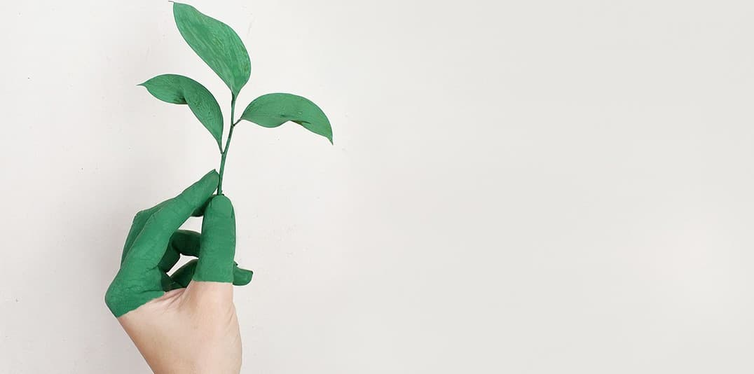 Sustainability: What are we doing?